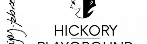 The Hickory Playground Arts Gala!